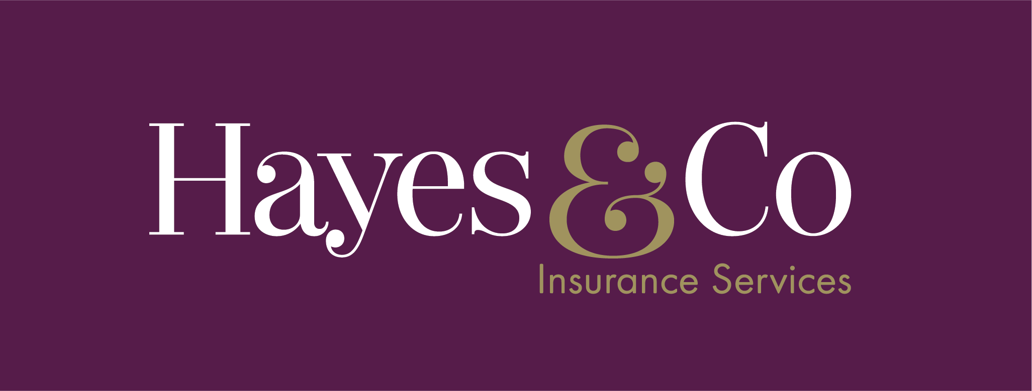 Hayes & Co Insurance Services